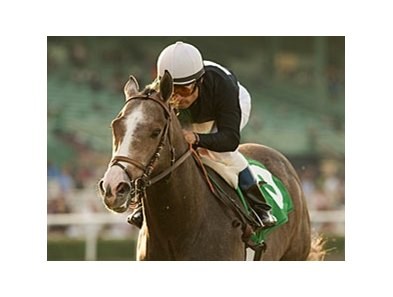 "The Pamplemousse will start from the outside in the Santa Anita Derby.<br><a target=""blank"" href=""http://www.bloodhorse.com/horse-racing/photo-store?ref=http%3A%2F%2Fpictopia.com%2Fperl%2Fgal%3Fprovider_id%3D368%26ptp_photo_id%3D7833331%26ref%3Dstory"">Order This Photo</a>"