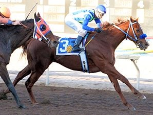 Show Some Magic Steps Up in Allison Futurity