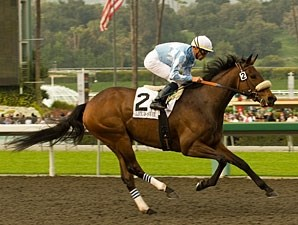 Life Is Sweet wins the 2009 Santa Margarita