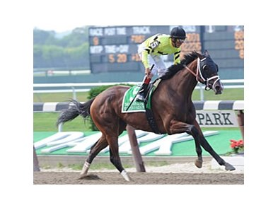 "Buster's Ready cruises to victory in the Mother Goose.<br><a target=""blank"" href=""http://www.bloodhorse.com/horse-racing/photo-store?ref=http%3A%2F%2Fpictopia.com%2Fperl%2Fgal%3Fprovider_id%3D368%26ptp_photo_id%3D9576696%26ref%3Dstory"">Order This Photo</a>"