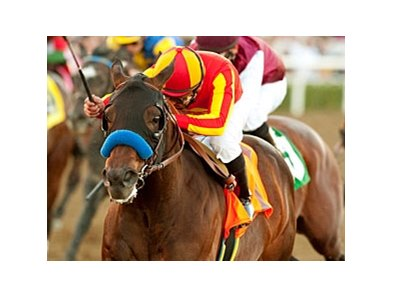 "Indian Firewater<br><a target=""blank"" href=""http://www.bloodhorse.com/horse-racing/photo-store?ref=http%3A%2F%2Fpictopia.com%2Fperl%2Fgal%3Fprovider_id%3D368%26ptp_photo_id%3D9372247%26ref%3Dstory"">Order This Photo</a>"