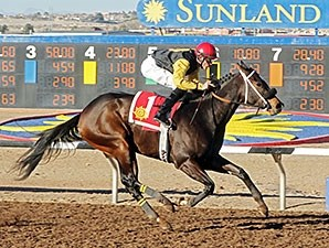 Ramona's Wildcat wins the 2014 El Paso Times Handicap.