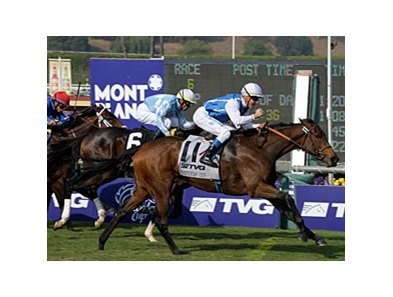 "Goldikova comes home strong to take the Breeders' Cup Mile for the second year in a row.<br><a target=""blank"" href=""http://www.bloodhorse.com/horse-racing/photo-store?ref=http%3A%2F%2Fpictopia.com%2Fperl%2Fgal%3Fprovider_id%3D368%26ptp_photo_id%3D8610314%26ref%3Dstory"">Order This Photo</a>"