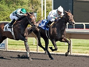 My Option wins the 2013 Arlington Oaks.