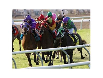 French Beret and James Graham (center, yellow cap) take the Colonel E.R. Bradley Handicap by a nose.