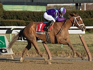 Princess of Sylmar wins the 2013 Busanda.