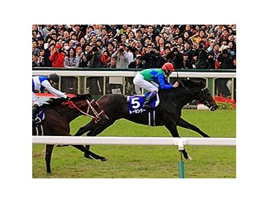 Tosen Ra wins The Mile Championship at Kyoto Racecourse, Japan.