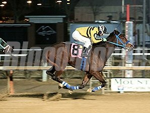 Musicinthehouse wins the 2014 Welcome Back Dash Allowance.