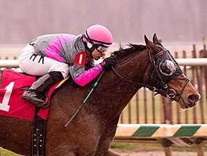 Lady Sabelia wins the 2014 Willa On the Move Stakes.