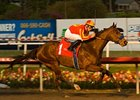 "Lookin At Lucky<br><a target=""blank"" href=""http://www.bloodhorse.com/horse-racing/photo-store?ref=http%3A%2F%2Fpictopia.com%2Fperl%2Fgal%3Fprovider_id%3D368%26ptp_photo_id%3D8709529%26ref%3Dstory"">Order This Photo</a>"