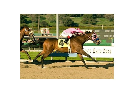 "Longshot Zappa cruises to victory in the San Pasqual Handicap.<br><a target=""blank"" href=""http://www.bloodhorse.com/horse-racing/photo-store?ref=http%3A%2F%2Fpictopia.com%2Fperl%2Fgal%3Fprovider_id%3D368%26ptp_photo_id%3D3278417%26ref%3Dstory"">Order This Photo</a>"