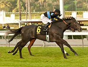 Hillside Ace Mizdirection Wins Monrovia Again