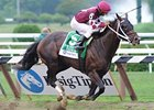 "Tizway<br><a target=""blank"" href=""http://www.bloodhorse.com/horse-racing/photo-store?ref=http%3A%2F%2Fpictopia.com%2Fperl%2Fgal%3Fprovider_id%3D368%26ptp_photo_id%3D9627388%26ref%3Dstory"">Order This Photo</a>"