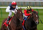 "Siyouma (left) fights off Elusive Kate to win the Kingdom of Bahrain Sun Chariot Stakes.<br><a target=""blank"" href=""http://photos.bloodhorse.com/AtTheRaces-1/at-the-races-2012/22274956_jFd5jM#!i=2117233764&k=JwR6xXC"">Order This Photo</a>"