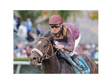 "Dialed In <br><a target=""blank"" href=""http://www.bloodhorse.com/horse-racing/photo-store?ref=http%3A%2F%2Fpictopia.com%2Fperl%2Fgal%3Fprovider_id%3D368%26ptp_photo_id%3D9461053%26ref%3Dstory"">Order This Photo</a>"