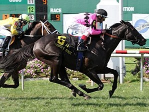 Casino Host in the Mervin Muniz Jr. Handicap.