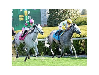 "Hard Not to Like won the 2014 Jenny Wiley by half a length. <br><a target=""blank"" href=""http://photos.bloodhorse.com/AtTheRaces-1/At-the-Races-2014/35724761_2vdnSX#!i=3175856631&k=scKxSKC"">Order This Photo</a>"