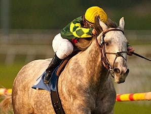 Unbridled Command in the Hollywood Derby.