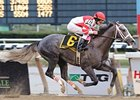 "Old Fashioned winning the Remsen Stakes (gr. II)on Nov. 29. <br><a target=""blank"" href=""http://www.bloodhorse.com/horse-racing/photo-store?ref=http%3A%2F%2Fpictopia.com%2Fperl%2Fgal%3Fprovider_id%3D368%26ptp_photo_id%3D6898323%0D%0A%26ref%3Dstory"">Order This Photo</a>"