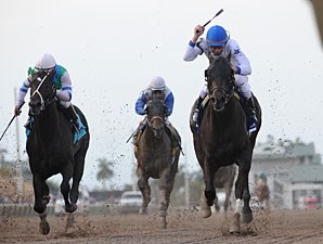 Take Charge Indy wins the 2012 Florida Derby.