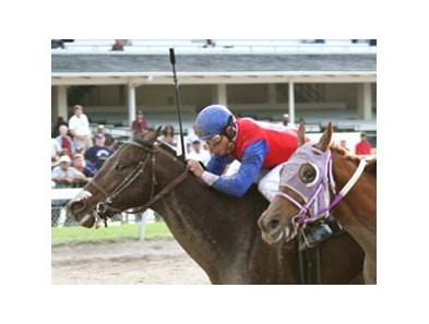 Motovato rallied from last to win the Kenny Noe Jr. Handicap.