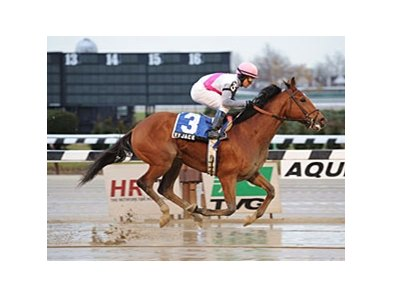 "Vyjack, undefeated in two starts at Aqueduct, is favored in the Jerome.<br><a target=""blank"" href=""http://photos.bloodhorse.com/AtTheRaces-1/at-the-races-2012/22274956_jFd5jM#!i=2302868167&k=SpTDMs6"">Order This Photo</a>"