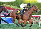 Twilight Eclipse Seeks Pan American Repeat