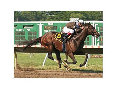 Afleet Express pulls away to win the Pegasus Stakes at Monmouth.