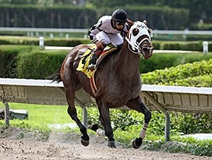 Where's Sterling wins the 2012 Memorial Day Handicap.