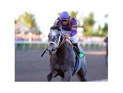 "Flashpoint<br><a target=""blank"" href=""http://www.bloodhorse.com/horse-racing/photo-store?ref=http%3A%2F%2Fpictopia.com%2Fperl%2Fgal%3Fprovider_id%3D368%26ptp_photo_id%3D9423482%26ref%3Dstory"">Order This Photo</a>"