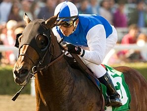 Grade I Winner In Summation to Ocala Stud
