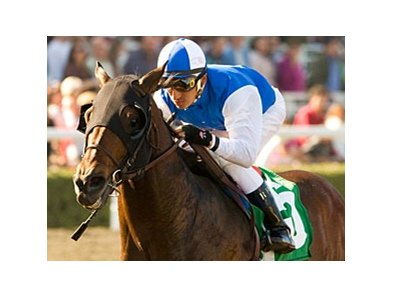"In Summation<br><a target=""blank"" href=""http://www.bloodhorse.com/horse-racing/photo-store?ref=http%3A%2F%2Fpictopia.com%2Fperl%2Fgal%3Fprovider_id%3D368%26ptp_photo_id%3D7284300%26ref%3Dstory"">Order This Photo</a>"