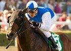 In Summation is among the horses on the ballot for Calder Casino & Race Course Hall of Fame.