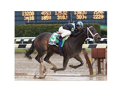 "Dream Play cruises to victory in the Comely.<br><a target=""blank"" href=""http://www.bloodhorse.com/horse-racing/photo-store?ref=http%3A%2F%2Fpictopia.com%2Fperl%2Fgal%3Fprovider_id%3D368%26ptp_photo_id%3D7999964%26ref%3Dstory"">Order This Photo</a>"