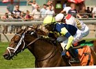 Roxy Gap won the Royal North Stakes by a half length on turf July 29.