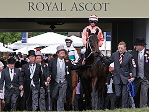 Black Caviar at Royal Ascot.