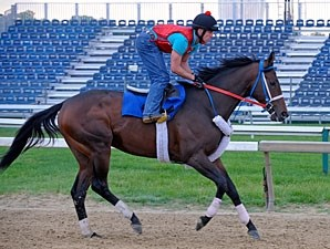 Isn't He Perfect - Pimlico May 20, 2011.