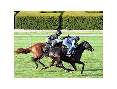 Willcox Inn (outside) and Rough Sailing work at Keeneland on Oct. 30.