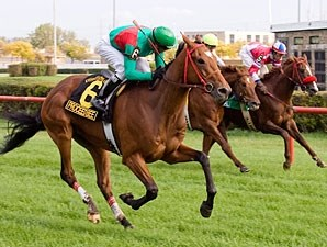 Proceed Bee wins the 2009 Hawthorne Derby.