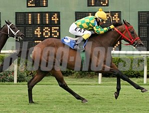 Lee's Spirit wins the 2010 Barksdale Stakes.