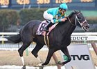 "Gotham Winner I Want Revenge will try to continue his New York dominance in the Wood.<br><a target=""blank"" href=""http://www.bloodhorse.com/horse-racing/photo-store?ref=http%3A%2F%2Fpictopia.com%2Fperl%2Fgal%3Fprovider_id%3D368%26ptp_photo_id%3D7872255%26ref%3Dstory"">Order This Photo</a>"