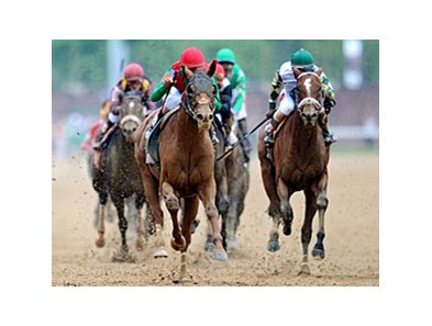 Animal Kingdom at the Kentucky Derby.