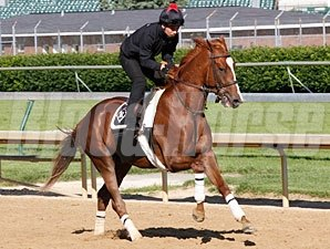 Dullahan - Churchill Downs, May 10, 2012.