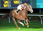 Coalport carries topweight of 121 pounds in the Mervin H. Muniz Jr. Handicap.