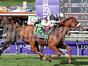 Main Sequence in the Breeders' Cup Turf.