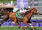 "Main Sequence won the Longines Breeders' Cup Turf (gr. IT) and two grade I Breeders' Cup Challenge races. <br><a target=""blank"" href=""http://photos.bloodhorse.com/BreedersCup/2014-Breeders-Cup/Turf/i-TW3B7bB/A"">Order This Photo</a>"