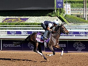 Sivoliere - Breeders' Cup 2014
