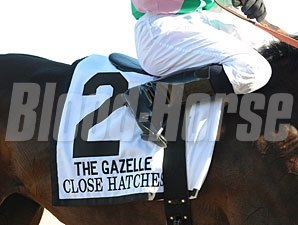 Close Hatches wins the 2013 Gazelle.