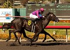 Potesta Proves Best in Hollywood Oaks