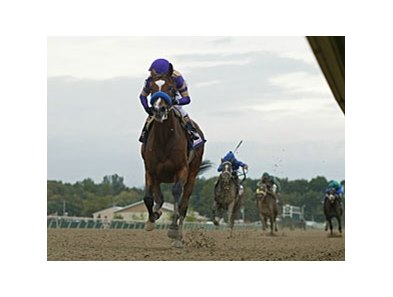 Plum Pretty winning the 2011 Cotillion Stakes.